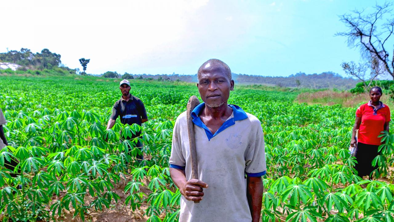 Smallholder farmers of Nigeria's Kogi State